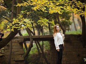 又是一年赏枫时(二)Enjoy the Maple season(2)